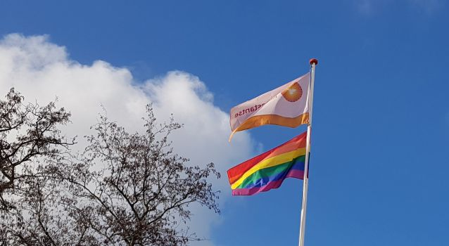 pknvlag en regenboogvlag