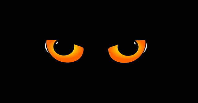 kattenogen in duister